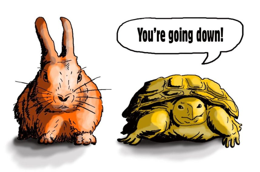 Tortoise to hare:
